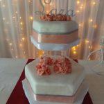 torta de 15 de 2 pisos